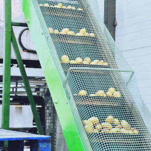 proces ventilatoren aardappel inpakmachine